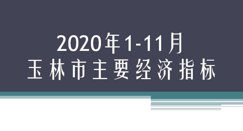 2020年1-11月玉林市主要经济指标