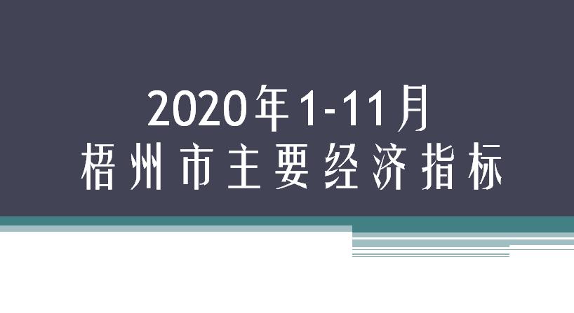 2020年1-11月梧州市主要经济指标
