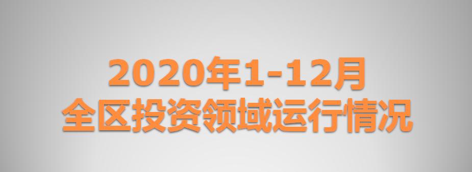 2020年1-12月全区投资领域运行情况